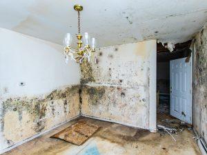 water damage restoration winston-salem, water damage cleanup winston-salem, water damage winston-salem