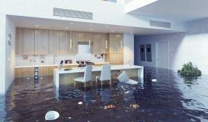 water damage restoration charlottesville, water damage repair charlottesville, water damage cleanup charlottesville